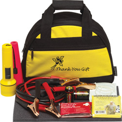 Bee Safe car emergency kit