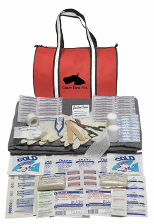 Sport First Aid Kit in a Duffel Bag