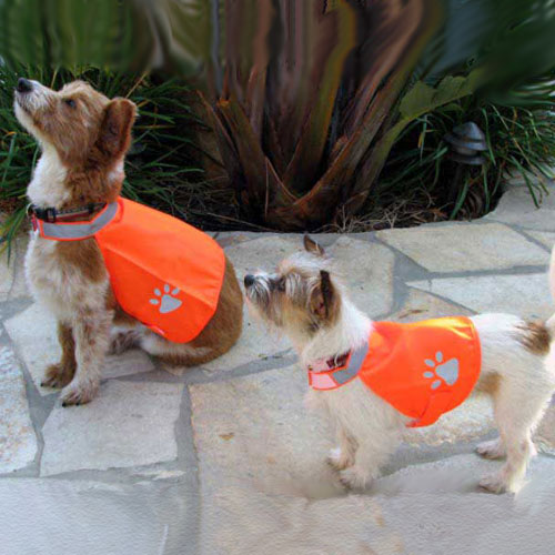 Pet Safety Vest (Case of 6)