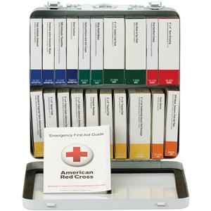 50-Person, 24-Unit ANSI-2015 Class A+ Weatherproof First Aid Kit, Metal