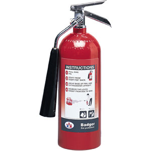Badger Extra 5 lb CO2 Fire Extinguisher w/ Wall Hook