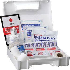 25-Person ANSI Bulk First Aid Kit, (Plastic)