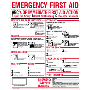 """ABC's of Emergency First Aid"" Plastic Sign"