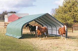 22'W x 20'L x 10'7&quot;H - Peak Style Run In/Hay Shelter <br> Free Shipping!!! </br>